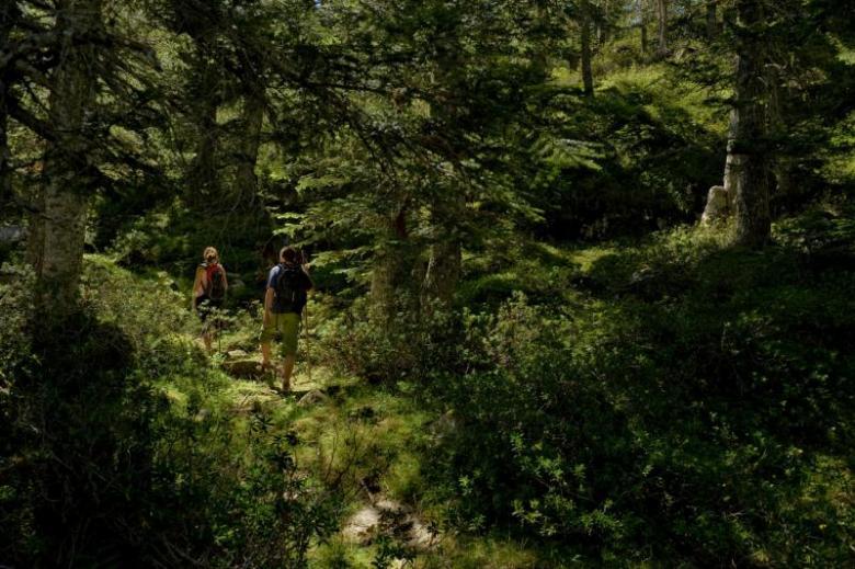 Vall de Boí entre parajes naturales