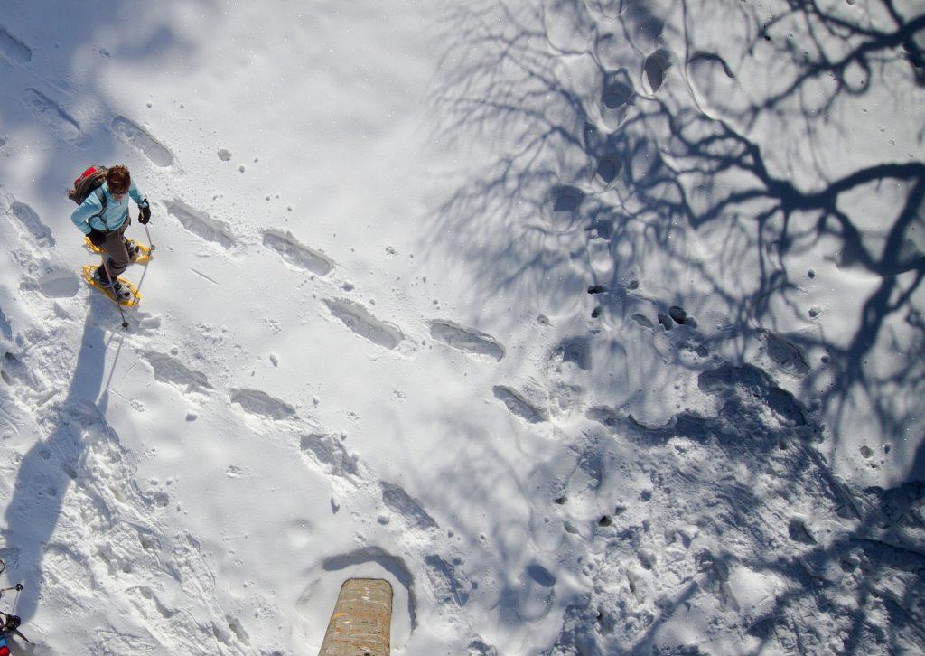 Raquetas en Vall de Boí 2020 - Disfrute de una placentera ruta en raquetas