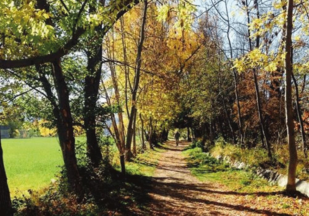 Camí dels Enamorats-Los 6 paseos que no te puedes perder durante tu visita a VALL DE BOÍ